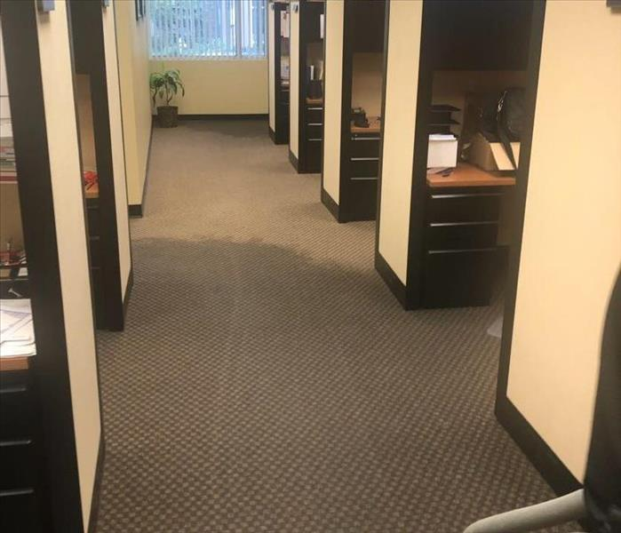 Office space with wet carpet from water damage
