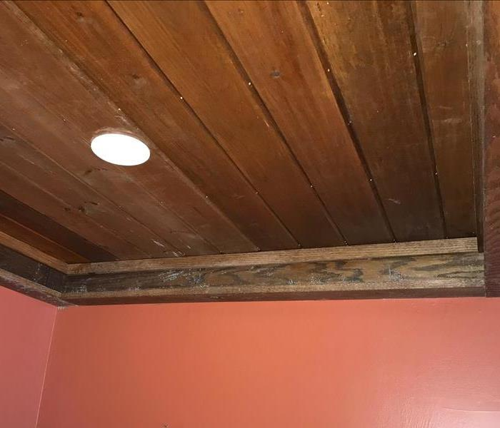 Moldy Wood Beams in Beautiful Wildwood Lake Home