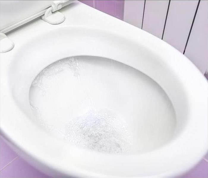 Water Damage What To Do If Your Toilet Overflows- Cleveland, TN