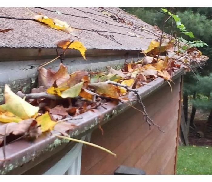 Clogged gutters with leaves and debris