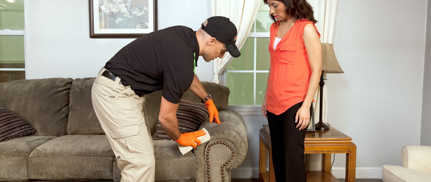 Cleveland, TN carpet upholstery cleaning